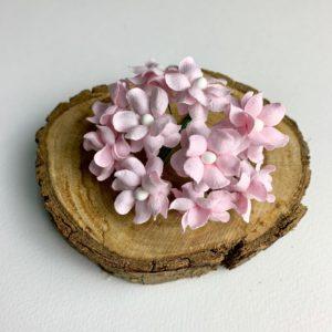 Ramillete de 10 Florecillas Sareras